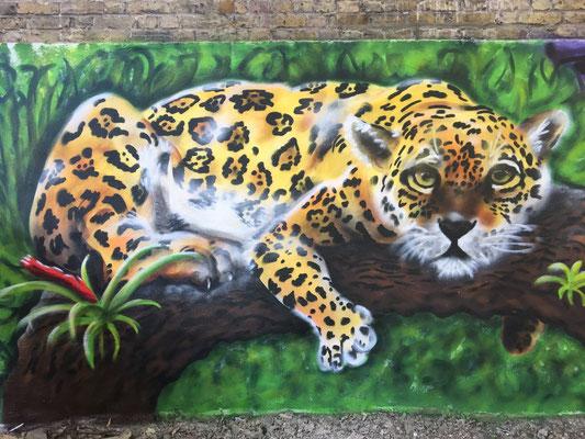 Jaguar at the Fox and Firkin Pub, Lewisham, London, 2019
