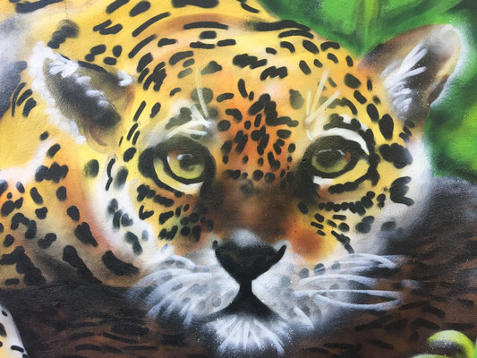 My Jaguar at Fox & Firkin Pub, Lewisham, London, 2019