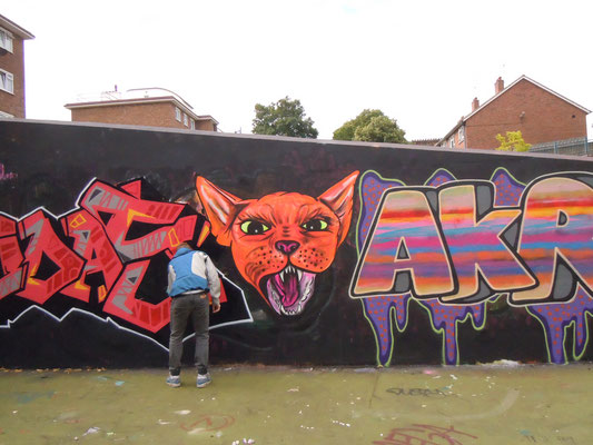 Angry Cat in Stockwell Estate, London, 2010