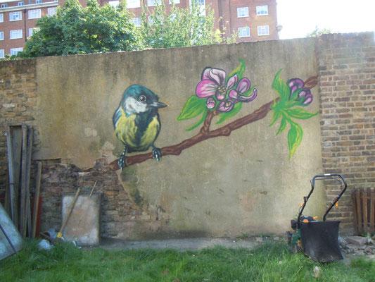 Blue Tit, The Magic Garden, Battersea, London, 2010