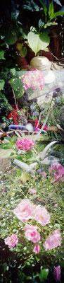 Au jardin, Lumière et chaleur, 2010, L37 x H120cm, 2/30 © Annick Maroussy