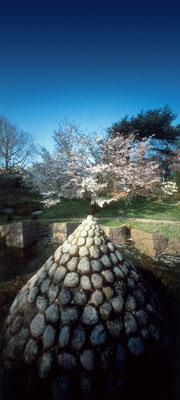 Le printemps, jardin japonais contemporain, Albert Kahn, 2009, L48 cm x H90 cm, 1/30 © Annick Maroussy