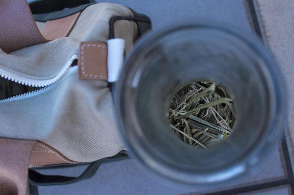 オリーブ帆布に使う葉