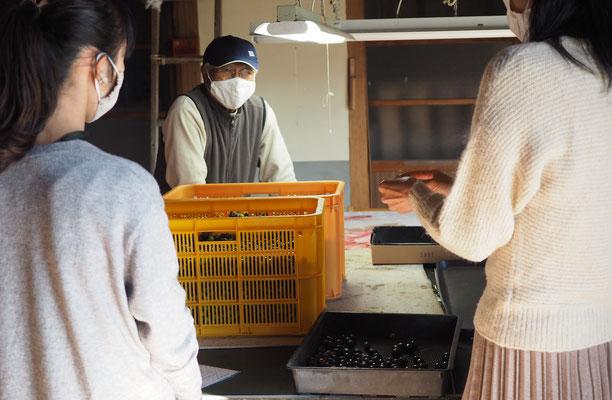 小豆島のオリーブ農家さん