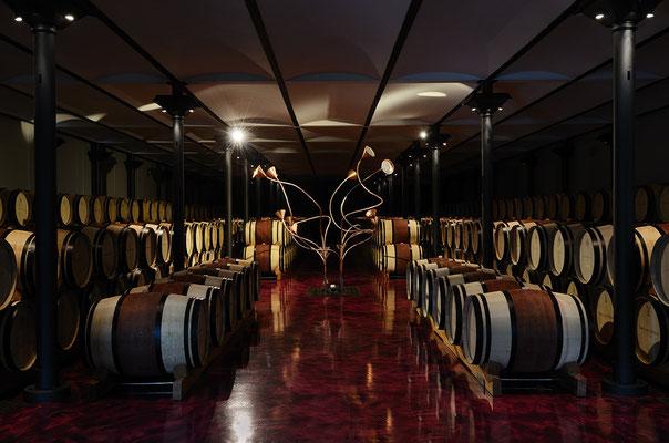 дегустация супер тосканских вин в тоскане