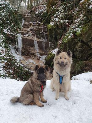 Feebee & Angel