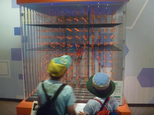 電気の科学館2