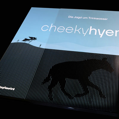 © play!moiré – Cheeky Hyena: Moiré-Effekt Schuber
