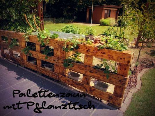 zaun aus europaletten bauen unser kleingarten ein. Black Bedroom Furniture Sets. Home Design Ideas