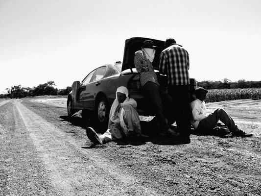 Farm Workers in Griffith