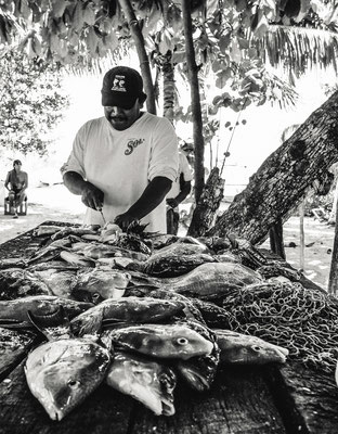 Fisherman in Isla Mujeres