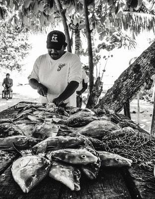 Fisherman in Isla Mujeres