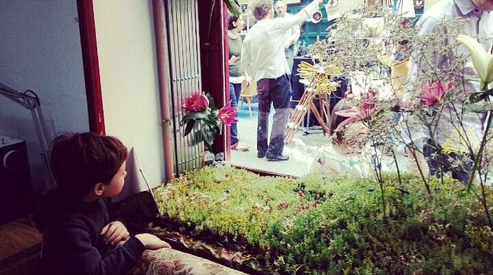 jardín efímero en nuestro escaparate
