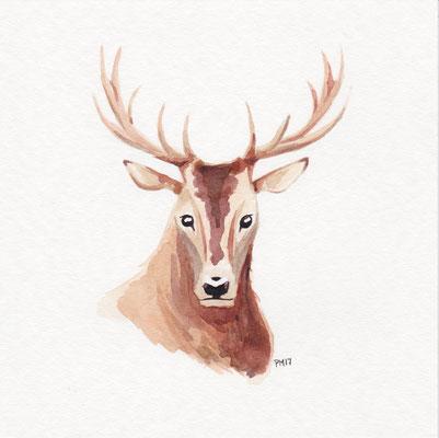 Deer (CH)