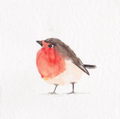 Robin [Sold, Verkauft]