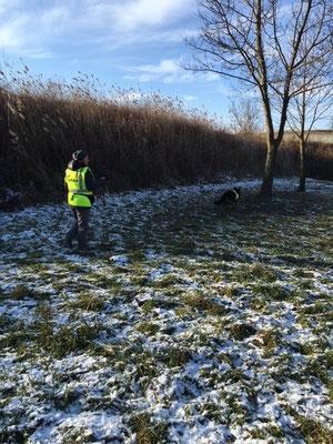 Naomi - über die schneegefrorene Wiese