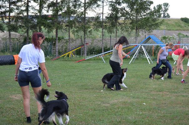 Dogdance Tulln