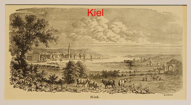 DK 299 - Kiel, Ansicht übers Wasser, Hst. von Gusmand um 1880- 8,8x16,5(9,5x19) = 25 EUR