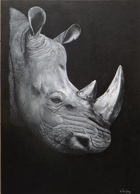 """Rhinocéros"" - acrylique - 50 x 70 cm"