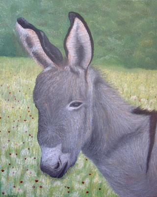 """""""Petit âne"""" - acrylique - 40 x 50 cm"""