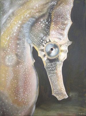"""""""Hyppocampe des abysses"""" -  acrylique - 30 x 40 cm"""