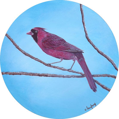 """Cardinal rouge"" - Technique mixte - Diamètre 30 cm"
