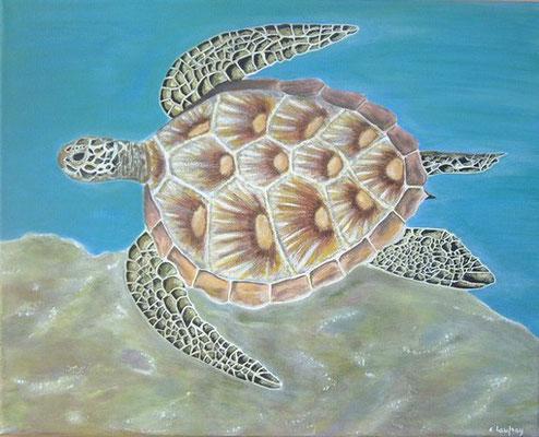 """""""Tortue de mer"""" - acrylique - 40 x 50 cm"""