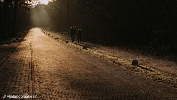 'Badweg Vlieland in de vroege morgen'