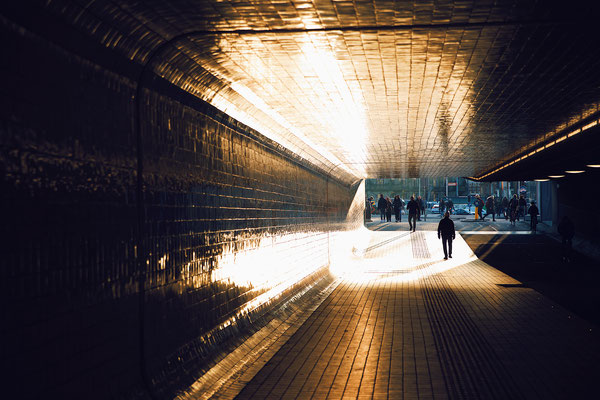 'into the light'