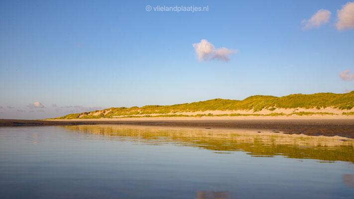 Strandspiegel II duinenrij Vlieland _ juli 2021