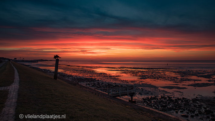 Gouden moment voor zonsopkomst Vlieland 21 feb 2021