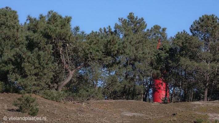 'Vuurtoren Vlieland'