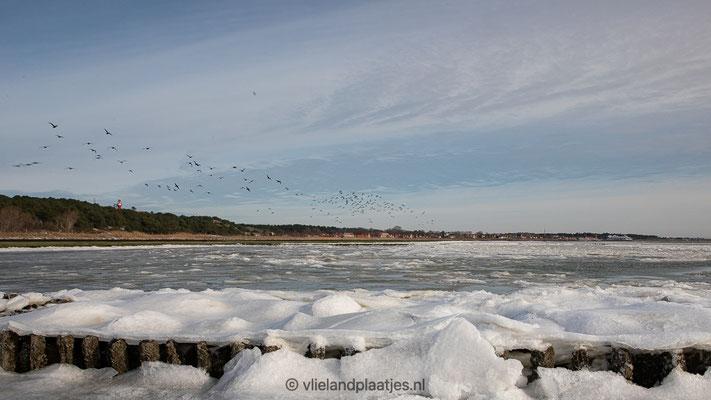 'Dorpsgezicht Vlieland met bevroren Waddenzee'