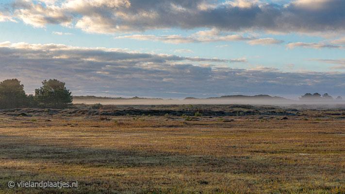 'Kooisplek in de mist'