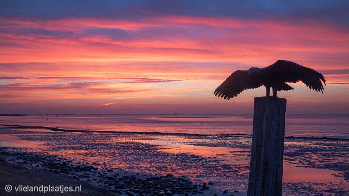 Gouden moment II voor zonsopkomst Vlieland 21 feb 2021