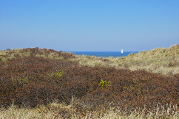 Sailing Vlieland