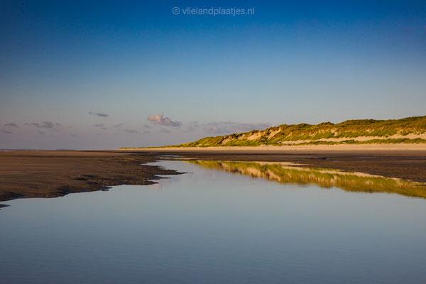 Strandspiegel I duinenrij Vlieland _ juli 2021