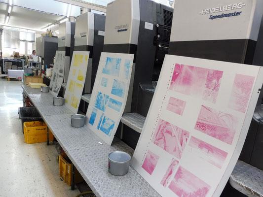 Vier Druckplatten