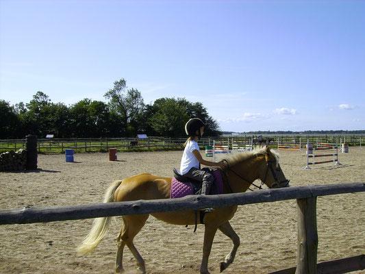 In Wrzosowo ca. 1 km Enfernung befindet sich ein Reiterhof.