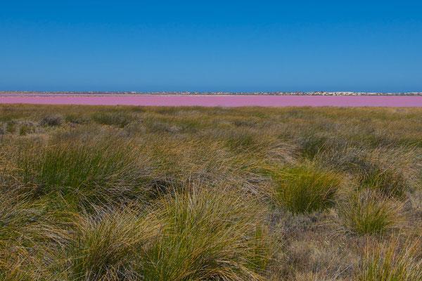 Der Lake Hillier ist ein 600 Meter langer pinkfarbener Salzsee