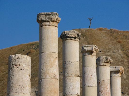 Bet Sche'an (Skythopolis) Skythopolis (im Hintergrund der Tell el-Hösn)
