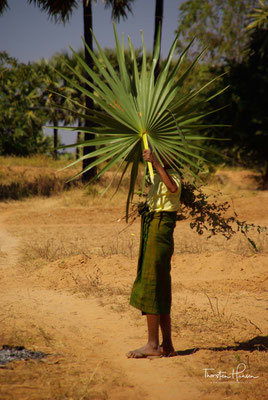 Zur Lokalisierung von großer Macht kam es in Bagan jedoch erst mit der Thronbesteigung König Anawrahtas (auch Anuruddha) im Jahre 1044.
