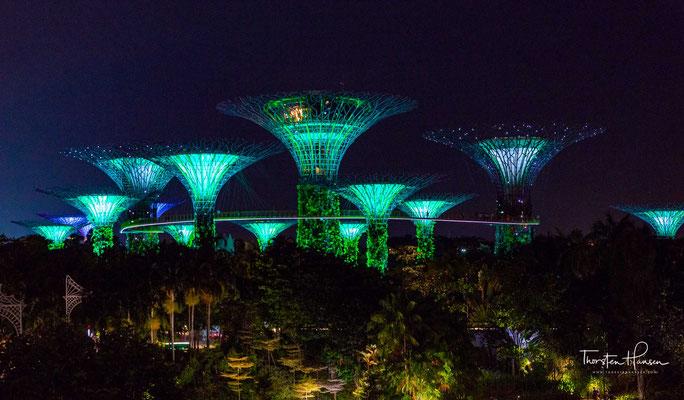 Gardens by the Bay ist Teil einer Strategie der Regierung des Stadtstaats Singapur, mit welcher die Gartenstadt in eine Stadt im Garten umgewandelt werden soll, damit die Lebensqualität der Einwohner durch Grünzüge verbessert werden kann