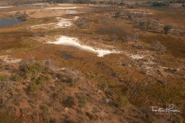 Der durchschnittliche jährliche Niederschlag beträgt am Nordende des Panhandle bei Shakawe 550 mm und nimmt nach Südosten hin bis auf rund 450 mm in Maun ab.