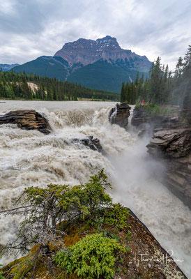 Die Athabasca Falls sind 23 Meter hohe Wasserfälle im Athabasca River im Jasper-Nationalpark in Alberta, Kanada nahe dem Icefields Parkway
