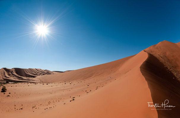 Die Sandrücken, die das Deadvlei im Nordosten und Südwesten flankieren, sind zwei Ausläufer dieser Großdüne.