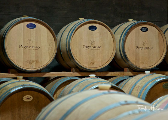 Weinfässer des Weinguts