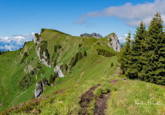 Sie gliedern sich in den Vorderen (1670m) und den Hinteren Kirchstein (1667m).Der Vordere Kirschstein wird häufig erstiegen, da er Teil des Übergangs vom Brauneck zur Benediktenwand ist.