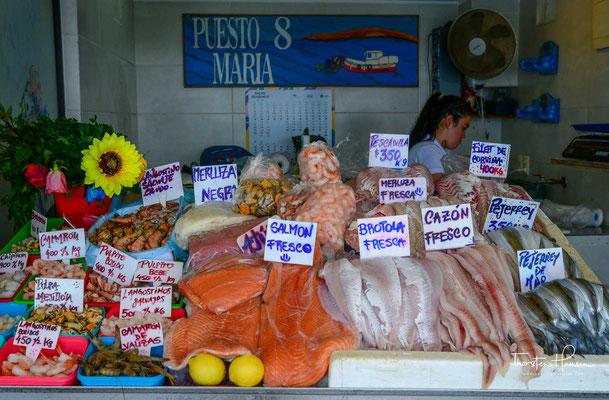 """Sie alle haben hier schon Urlaub gemacht: in und um Punta del Este - """"the place to be"""" im südamerikanischen Sommer."""