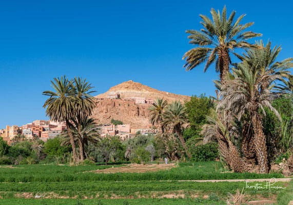 Die Oasengruppe liegt im Osten der Region Drâa-Tafilalet in den Ausläufern des Atlas-Gebirges. Die Lage wurde früher mit zehn Kamelkarawanentagen südlich von Fès angegeben